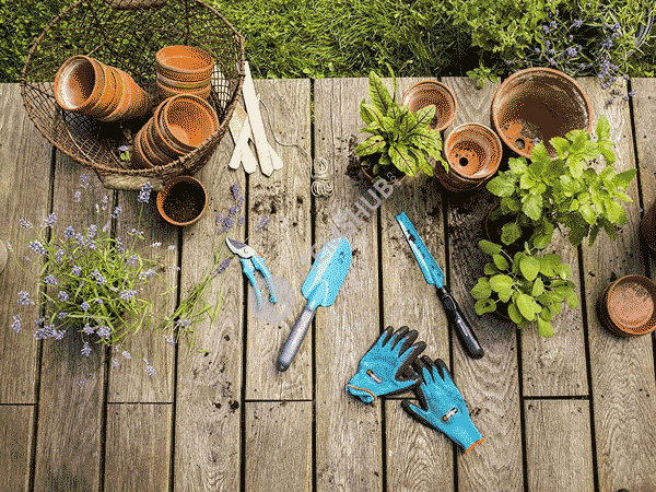 8 Basic Gardening Tools for Garden Owners
